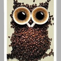 Iphone4s Iphone4 Owls Coffee Cup TPU Case Coffee Beans Come with a Free Screen Protector