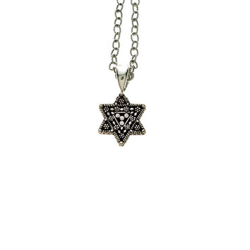 Torah Finial Star Sterling Silver Necklace