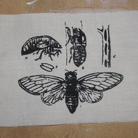 Insect Patch, Cicada Life Cycle Patch - Black ink on Natural Beige White canvas - Insect, Bug Silkscreen Screenprint Image, punk patch