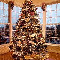 Christmas Time Photography Background / 7817