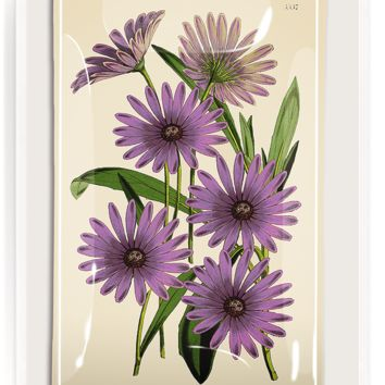 Purple Daisy Blossoms Decoupage Glass Tray