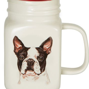 All you need is Love. . . and a Boston Terrier