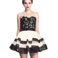 Staychicfashion Lace Applique Top Strapless a Line Black Nude Tulle Dress