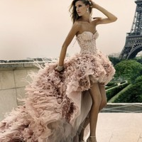 Free Shipping 2012 New Sexy Organza Sweetheart Beaded Feather Short Front Long Back Pink Wedding Dresses Jywd004 - Buy Short Front Long Back Wedding Dress,Wedding Dresses,Wedding Gown Product on Alibaba.com