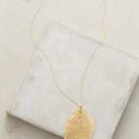 La Soula Golden Leaf Necklace in Gold Size: One Size Necklaces