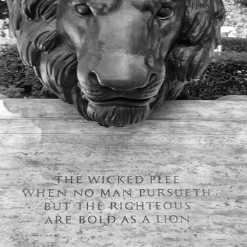 "Washington DC Photo Police Memorial  quote ""As Bold as Lions"" Statue of Lion, Gift for Police Officers, Police Graduation, Office Decor"