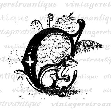 Printable Letter C with Chipmunk Digital Graphic Animal Letter Download Chipmunk Image Vintage Clip Art for Transfers etc HQ 300dpi No.4703