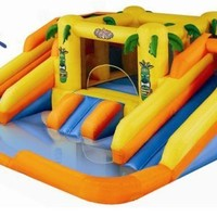 Blast Zone Rainforest Rapids Inflatable Bouncer with Slides by Blast Zone:Amazon:Toys & Games