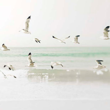 Ocean Photography, mint & white, nautical decor, birds in flight, beach photograph, coastal decor