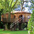 Blue Forest Tree Houses - buy at Firebox.com