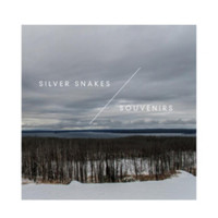 "Silver Snakes/Souvenirs - Winter Songs Split 7"" Vinyl"