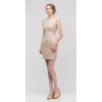 Champagne Above Knee Lace Fitted Cocktail Dress Tank Strap