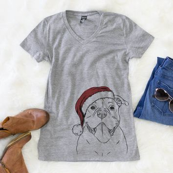 Nacho the American Bully  - Christmas Collection