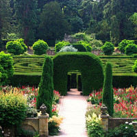 The Maze at Chatsworth | Flickr - Photo Sharing!