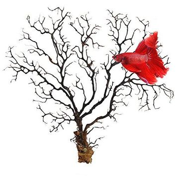 Natural Aquarium Sea Fan--- Dramatic Piece of Aquarium Décor - Very Strong & Unbendable Sea Willow - Great for Fish Tanks, Terrariums, Plant Tanks, Art Projects, & Wall Decor