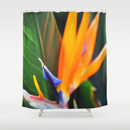 Bird Of Paradise 2 Shower Curtain From Nature City Shower