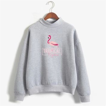Pink Flamingo Hoodies Women Kawaii Harajuku Pullovers Animals Sweatshirts Autumn hoody Tumblr Fleece Tracksuit Winter Clothes