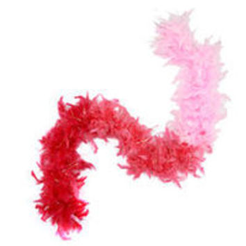 Dream Dazzlers Feather Boa - Shades of Pink