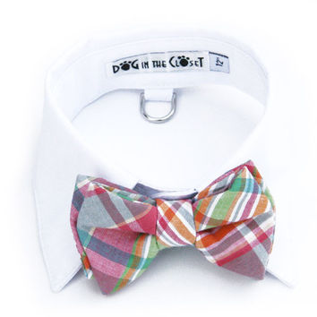 White Shirt Collar + Pastel Madras Bow Tie