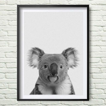 Koala print black and white animal wall art koala bear print grey and