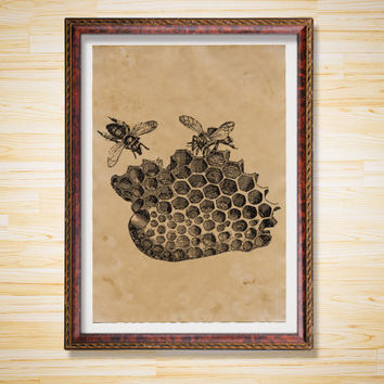 Bees print Animal poster Antique decor