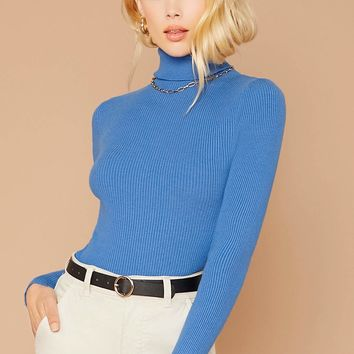Turtleneck Rib Knit Pullover Sweater