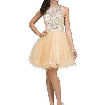 Sparkly Short Prom Dress  DQ9995