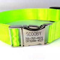 Customized Dog Collar  Engraved Buckle Name Address Phone Number Personalized handmade  Lime Green