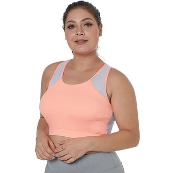 Light Coral Sheer Mesh Back Plus Size Sports Bra