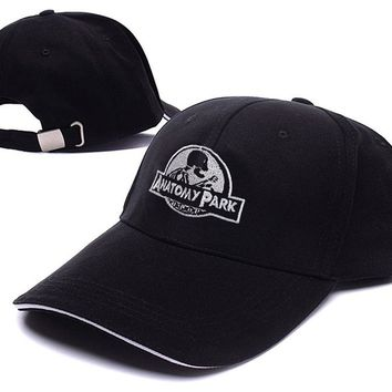 Anatomy Park Rick And Morty Logo Adjustable Baseball Caps Unisex Snapback Embroidery Hats