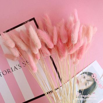 50pcs/bunch Dried Flowers Natural Rabbit Tail Grass Dried Flowers Artificial Plants Flowers Home & Office Decoration WED3873