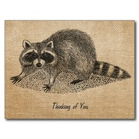 Burlap Vintage Raccoon Postcard from Zazzle.com