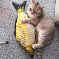 Cute Stuffed Fish Cat Toy