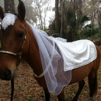 Equine Bride Costume - Equine Bridal Costume - Costume for Horse Bride