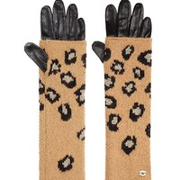 Fiercely Spotted Leopard Mitt Glove