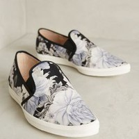 All Black Bold Flower Sneakers White Dhalia