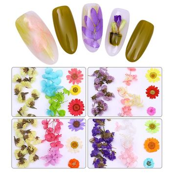 1 Box 3D Nail Art Decoration Colorful Dried Flower Preserved Flower With Heart-Shaped Box Manicure Design DIY Tips Accessories