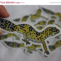 New Year Sale High Yellow Normal Leopard Gecko Design #019