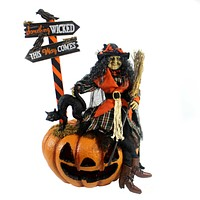 Halloween AGNES WITCH Fabric Fiber Optic Hasc02