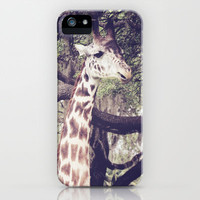 Sentinel iPhone & iPod Case by Beth Thompson