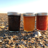 3 Pack Preserves: A Taste of Summer for  the Holidays