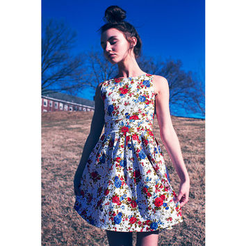 Rockabilly Marilyn Monroe Classic Shift Flare Skater Great Gatsby Fae Audrey Hepburn Country Red Blue Roses Alice in the Wonderland Dress