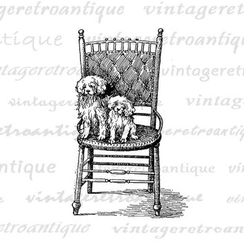 Printable Image Two Dogs on a Chair Digital Antique Graphic Download Vintage Clip Art Jpg Png Eps HQ 300dpi No.282