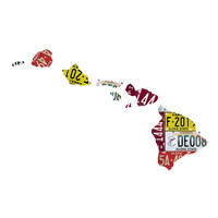 Hawaii License Plate wall decal