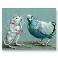 Rat and Pigeon Postcard from Zazzle.com