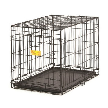 Life Stages ACE Dog Crate, 48-Inch