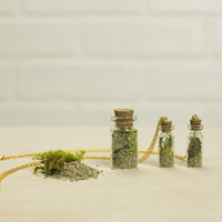 18k Gold-Filled Vial Terrarium Necklace Kit