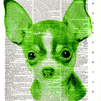 Chihuahua Dog - Vintage Dictionary Art Print - Page Size 8.5x11