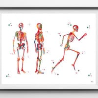 Human Body Skeleton Watercolor Print anatomy art medical art poster Skeletal System Structure print Running Skeleton Illustration