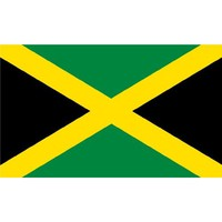 New 3x5 National Jamaican Flag National Jamaica Flags
